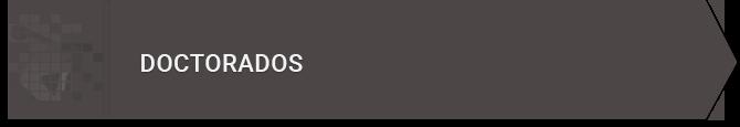 banner-doctorado