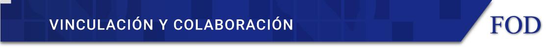 VINCULACION-Y-COLAB